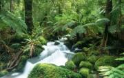 Beautiful places in Australia 13ddf4107966770