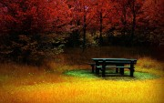 Autumn wallpapers 12a219108976469