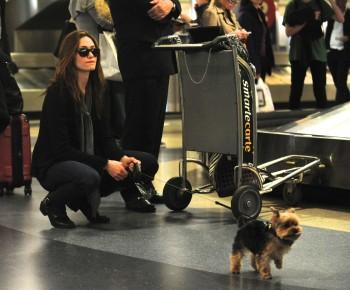 Эмми Россам, фото 3324. Emmy Rossum Looks Great with Her Dog LAX 2/17/12, foto 3324